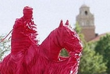 Guns Up! / by Rossilyn Reed