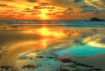 Just Beautiful! / by Tina Johnson