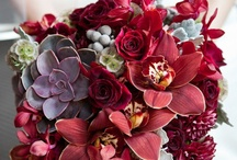 Beautiful Bouquets / Wedding ideas, wedding bouquets, bridal bouquets / by Engagement Invites ♥