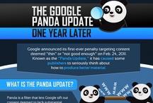 SEO InfoGraphics / by Pamela Lies