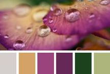 Color Themes / by Anne Davies