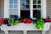 Garden ideas / by Kendra White