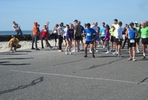 Cape Cod Events / Take a look at whats happening on Cape Cod.  / by Lighthouse Inn