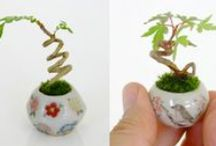Miniature-osity / by Tricia Johnson