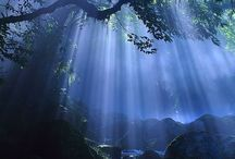 *Beautiful Nature-Backlight--- / by Shun Watashima