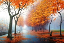 Autumn . . . My favorite Time of Year / by Hillery Crawford