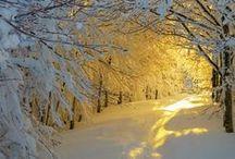 Winter Scenes <3  / by Karen Badcock