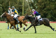Equestrian Game of Polo / by @Jurisprude