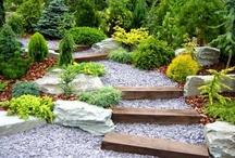 Gardening & Garden Art / by Sue Reid