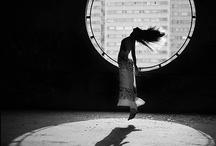 Fly / by Alexandra Quevedo