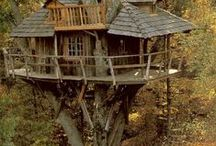 A HOME IN THE TREES / by Sage Kemmerlin