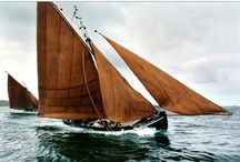 sail / by Conrad Sak