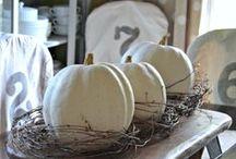 pumpkins / by barn owl primitives