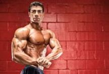 Chest Workouts / by Muscle & Fitness
