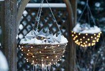 Holidays / by Christine E Stout