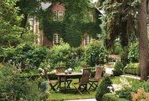 Backyard Beauty / by Fifthroom.com