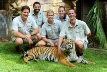 Conservation / by Australia Zoo .