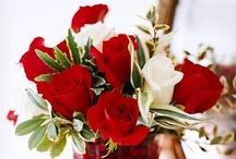 Floral Arrangements / by Joan Ziegler
