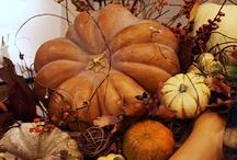 I love Fall ya'll / by Sunni Ashforth