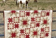 Quilts I like / by JoLynn Dickamore