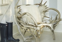 amazing chairs / by Valerie Anglade - 2B&Co.