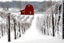 Barns / by Merry Hamrick