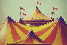 Under The Big Top... / by Linda Johnson