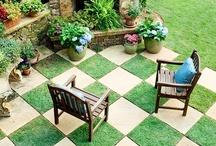 House - Garden / by Belinda Sergeant