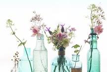 Flowers / by Belinda Sergeant