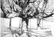 Drawing / by Kathy Van Torne