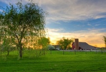 Indiana / by Bette Calderone