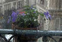 Rain / Listen to the rhythm of the rain / by Marilyn Roberts
