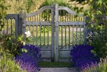 How Does Your Garden Grow? / by Allison Newsom