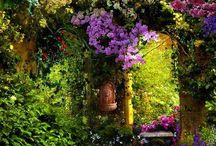My Secret Garden / by Mary Backus