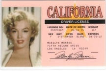 All about Marilyn / by Shirley Simon