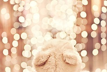 ☃winter☃ / ❝What good is the warmth of summer, without the cold of winter to give it sweetness.❞ / by Grace Lee