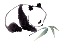 pandas galore / ╰☆╮everybody was kung fu fighting╰☆╮ / by Grace Lee