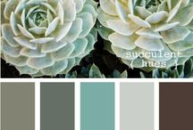 Color Palettes / Perfectly Paired Color Palettes for any room in your home.  / by Dawn Hunnicutt