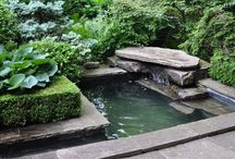 Outdoor Spaces / Backyards, small spaces, water gardens, and great outdoor ideas. / by Carol Aguero|LiveGreenMakeGreen