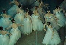 Ballet / Ballet / by Carin Khatchikian