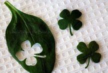 Holidays| St. Patrick's Day / by Melissa Prado