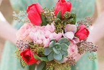 Wedding 4.30.16 / by Heather Poitras