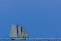 Sailing / Someday I will have my own boat to sail.  / by Wendy W