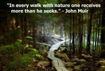 Inspiring Nature Quotes / Beautiful Nature Quotes / by Penny @ Mother Natured
