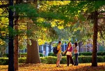 Campus Life / At St. Norbert you'll find there is more to college life than just attending classes. With more than 70 clubs and organizations on campus, a calendar packed with performances, lectures, social and athletic events, and a ton of local shops and restaurants, our world is yours for the taking. / by St. Norbert College