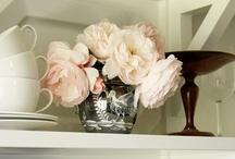 open shelves / by Marianne Simon Design