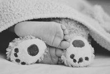 Oh Baby Baby / by Braidi Fredrickson