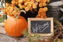 {Seasonal} Fall / by The Novice Chef Blog {Jessica}