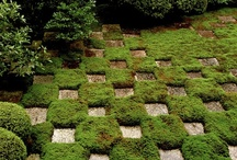 Gardens / by Heather Crowley