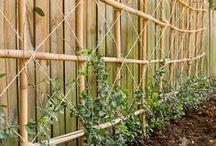Wonderful Gardens ideas>>Bring it! / by Terry Morrison